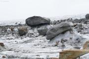 Fieschergletscher; Gletschertische
