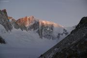 Finsteraarhornhütte SAC; Hinteres Fiescherhorn