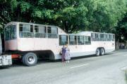 "La Habana, ""Camelito"" bus"