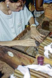 lucwulli_Cuba_1999_043