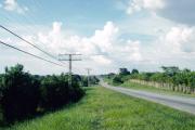 lucwulli_Cuba_1999_083