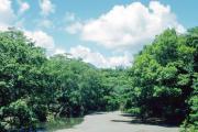 Zwischen Baracoa und Moa