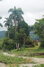 Sierra del Escambray, Parque Guanayara. Rio Melodioso, Casa La Callega