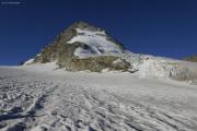 Cab. de Bertol --> Schönbielhütte |  Glacier du Mont Miné. Bouquetins