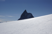 Cab. de Bertol --> Schönbielhütte |  Glacier du Mont Miné. Aufstieg zum Tête Blanche. 's Horu!