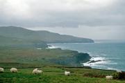 lucwulli_Ireland_1996_072