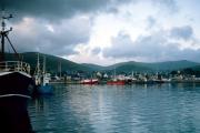 lucwulli_Ireland_1996_086