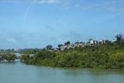 Mombasa. Mangrowen am Tudor Creek