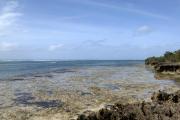 Chale Island, Kenia