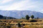 lucwulli_Kreta_1995_020