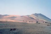 lucwulli_Lanzarote_1997_025