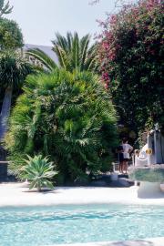 lucwulli_Lanzarote_1997_067