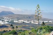lucwulli_Lanzarote_1997_086
