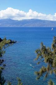 Lana'i, Honolua Bay, Maui, Hawai'i