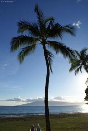 Insel Lana'i, Kanaapali Beach, Maui, Hawai'i