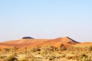 Sanddünen in der Namib bei Sossusvlei