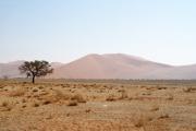 Sanddünen in der Namib beim Sossusvlei