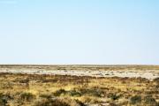 Rand der Etosha-Pfanne