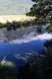 Mirror Lake zwischen Te Anau und Milford Sound