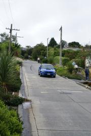 Dunedin. Baldwin Street - die steilste Strasse der Welt (max. 35%) !