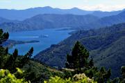 Queen Charlotte Sound bei Picton mit Fähre nach Wellington. Marlborough Sounds