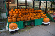Brooklyn, Henry St.. Bald ist Halloween...