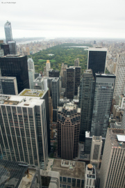 Central Park. Top of the Rock/Rockefeller Center