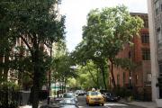E 21st Street