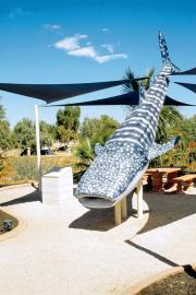 Exmouth. 1:2-Modell eines Walhais