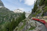VerticAlp Emosson, Le Petit Train panoramique (600mm, 1.5%)