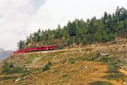 Zug mit TW III zwischen der Galleria Lunga und Alp Grüm. 1991
