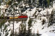 Güterzug mit einer Ge 4/4 II zwischen der Dienststation Muot und Preda. 1991