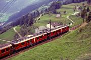 ABe 4/4 48 und ein weiterer TW II oberhalb Alp Grüm. 1994