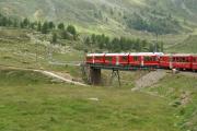 Allegra auf der Oberen Berninabachbrücke