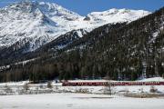 Bernina Express mit ABe 8/12 3511 zwischen Surovas und Morteratsch