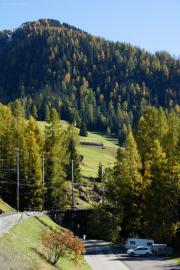 RE mit Ge 4/4 III 646 im Hang des Piz Darlux oberhalb Bergün