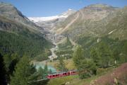 Alp Grüm. Piz Palü