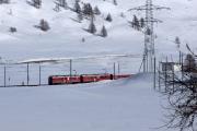 ABe 4/4 III 54 und 56 bei Bernina Lagalb