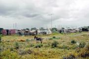 Bei Port Elizabeth, EC
