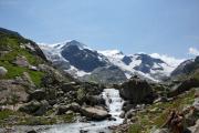 Tierberglihütte -> Steingletscher/Gadmen | Gwächtenhorn, Mittler und Vorder Tierberg