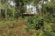 Chagga-Siedlung bei Marangu