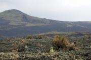 Kilimanjaro NP. Marangu-Route, Tag 2