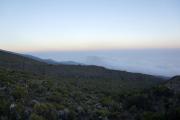 Dämmerung bei den Horombo-Hütten. Kilimanjaro NP. Marangu-Route, Extra-Tag 3