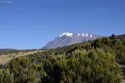 Der Kibo (5895m) - Top of Africa. Kilimanjaro NP. Marangu-Route, Tag 4
