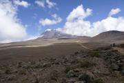 Piste zur Kibo-Hütte am Fusse des Kibo. Kilimanjaro NP. Marangu-Route, Tag 4