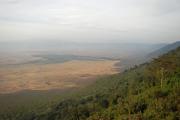 Ngorongoro. Südl. Kraterrand