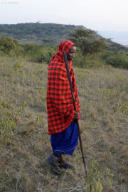 Junger Massai (unsere Nachtwache!)