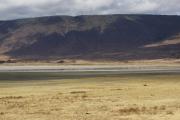 Flamingos. Ngorongoro Conservation Area
