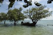 Rai Leh. Oststrand mit Mangroven