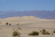 Sanddünen, Death Valley NP, CA
